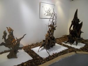 5 expo