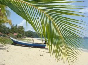 Sur_mon_île (2)