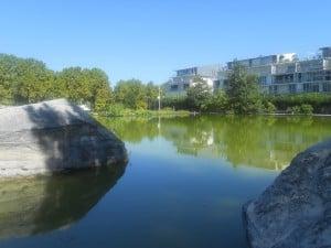 1 Bassins